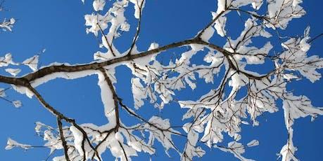 Winter Wellness Wisdom tickets
