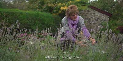 Feeding your Senses