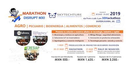 SkyTech 30Hackathon : AGRO Pecuario Bioenergia Alimentos Comercio boletos