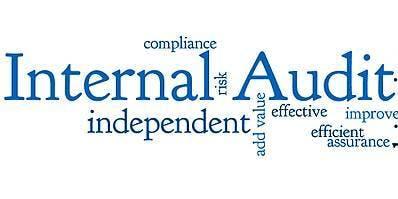 Internal Audit 101 - Tampa, Florida - Yellow Book, CIA & CPA CPE