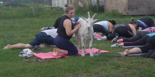 Goodness and Goats Yoga