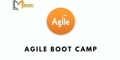 Agile 3 Days Boot Camp in San Jose, CA