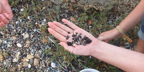 Microplastic Surveys on Hayling Island - Just One Ocean tickets