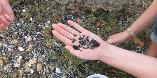 Microplastic Surveys on Hayling Island - Just One Ocean