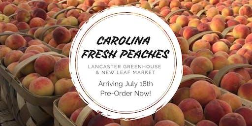 Fresh South Carolina Peaches Round 2!
