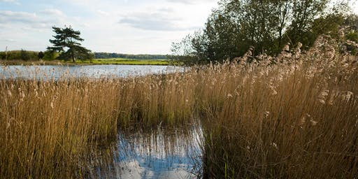Norfolk Walking Festival: Holkham National Nature Reserve Wildlife Park