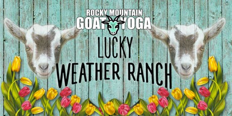 Goat Yoga - August 4th (Lucky Weather Ranch) tickets