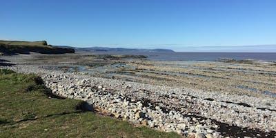 Kilve Rocky Shore Explore & Rock Pool Safari