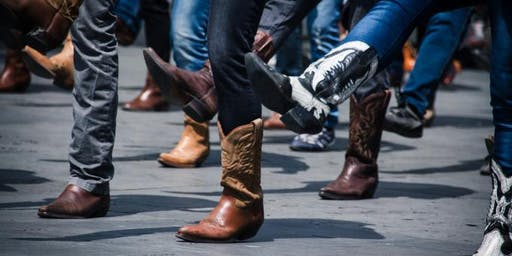 Shall We Dance? Line Dancing Session