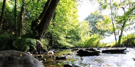 Westerwald: Wasser & Wandern wo die Nasen wohnen!  Tickets