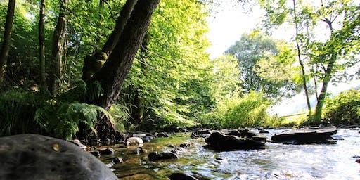 Westerwald: Wasser & Wandern wo die Nasen wohnen!
