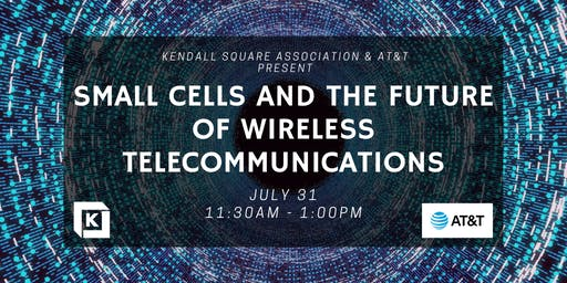 Small Cells and the Future of Wireless Telecommunications