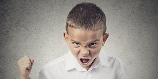 Transform Aggressive & Violent Behavior in the Family Home & Workplace