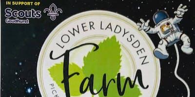 Lower Ladysden Farm Maize Maze 2019