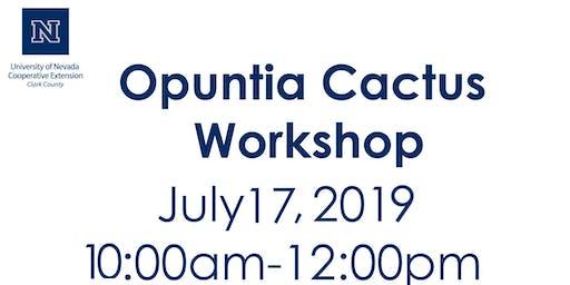 Opuntia Cactus Workshop