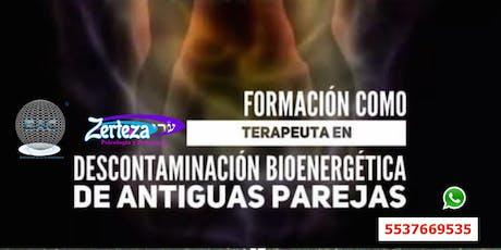 FORMACIÓN : Descontaminación Bioenergética de antiguas Parejas Sexuales. entradas