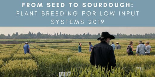 From Seed to Sourdough: Plant Breeding for Low Input Systems 2019