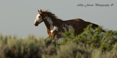 2019 Meeker Mustang Makeover