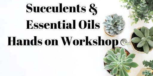 Succulents & Essential Oils