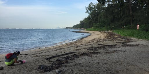 International Coastal Clean Up 2019 at Tanah Merah