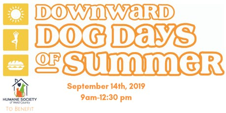 Downward Dog Days of Summer-Orange Flight (5 Pack) tickets