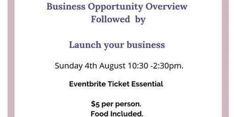 Business Opportunity Overview followed by Launch your business tickets