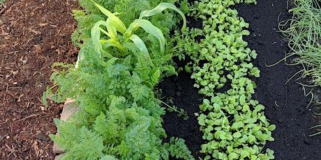 Communal Gardening  tickets