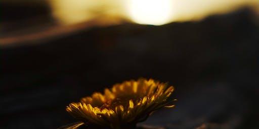 Iona Beach Sunset/Moonrise Photowalk w/ Shidan Bartlett and London Drugs