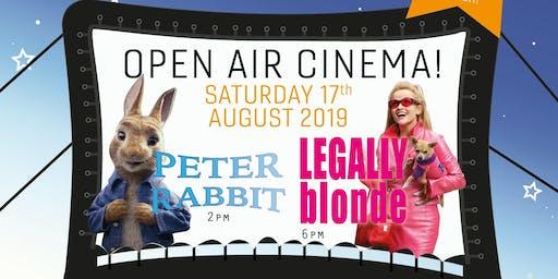 BGU's Open Air Cinema