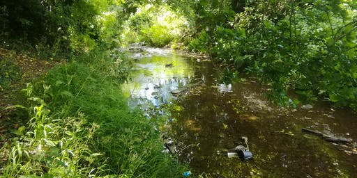 Litter pick - Return to Cobbins Brook