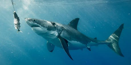 """""""Living with White Sharks"""" by Dr. Greg Skomal tickets"""