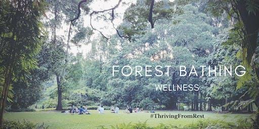 Forest Bathing Wellness @ Singapore Botanic Gardens
