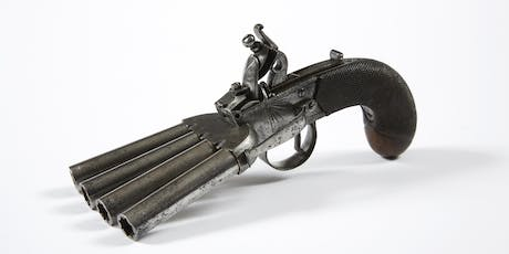 Hampshire's Firearms Collection at Chilcomb House tickets