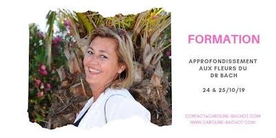 Formation : Approfondissement aux fleurs du Dr Bach