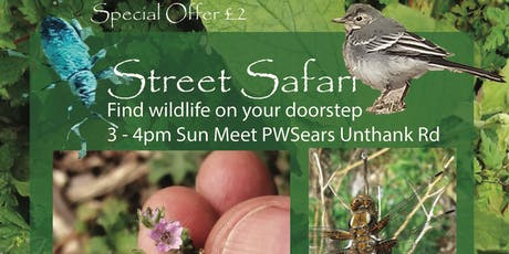 Street Safari tickets