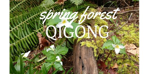 FREE EVENING - Spring Forest Qigong