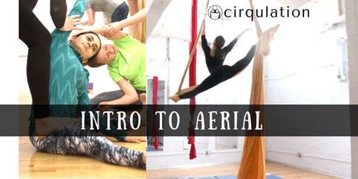 Intro to Aerial 6 Week Series (Monday's 6:15-7:15pm)