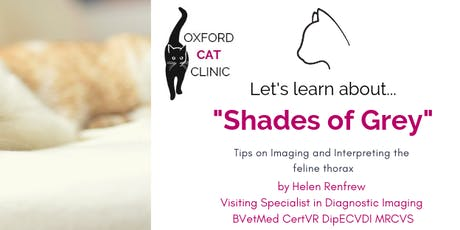 "RCVA ""Shades of Grey"" Feline CPD Summer Series tickets"