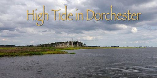 Films Across Borders: High Tide in Dorchester