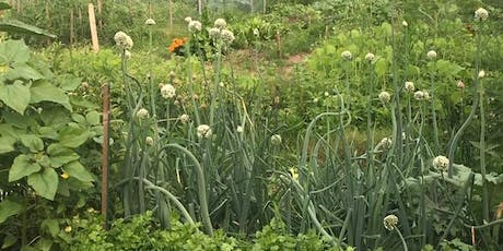 Grow the City! Community Garden Bus Tour tickets
