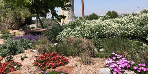 Yard and Garden 101