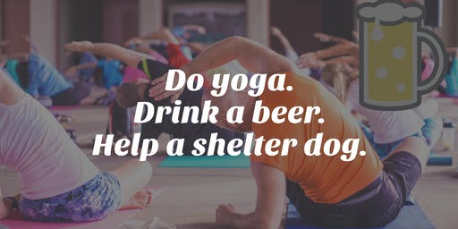 Yoga and Beer: A Benefit for Shelter Dogs