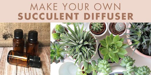 Make Your Own Succulent Diffuser