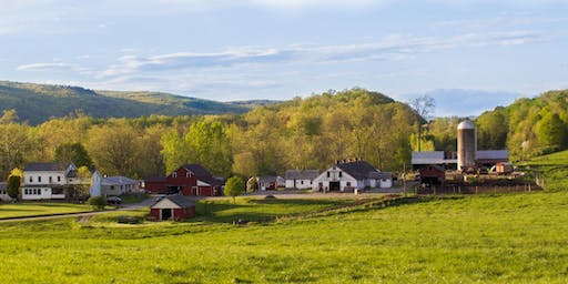 bonfire cookout // Brookby Farm in Harlem Valley