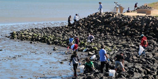 35th Annual San Mateo BayFront CleanUp September 21st