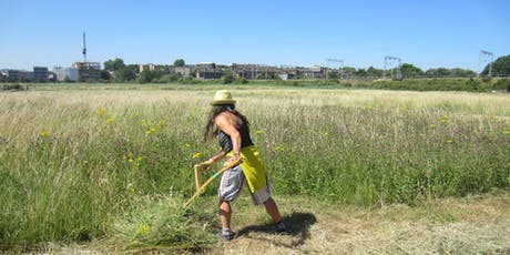 Scything Workshop during the 2019 Community Haystack tickets