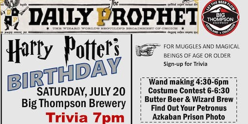 Harry Potter's Birthday Party