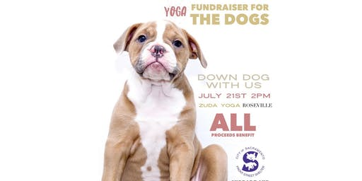 Arbonne Charity Yoga Event to Benefit Front Street Animal Shelter