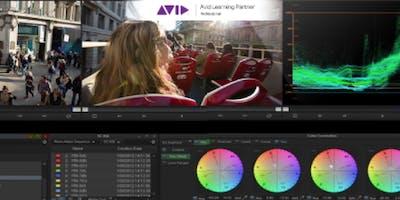 Avid Media Composer 2019 - Edição & Cor