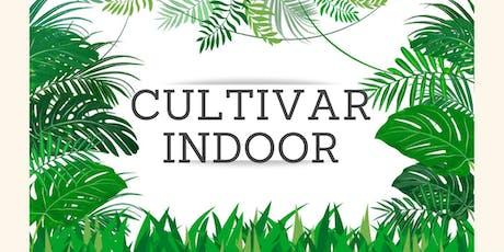 Cultivar Indoor entradas